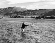 Fliegenfischen Lachs / Meerforelle