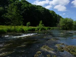 Fluß 2